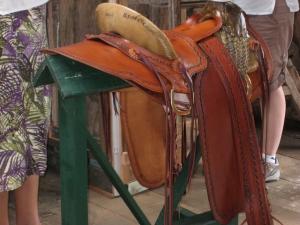Hawaiian tree saddle.